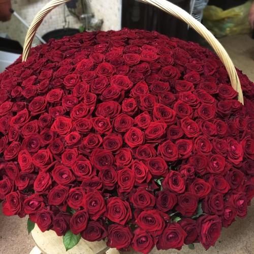 Купить на заказ 1001 роза с доставкой в Сарыагаше