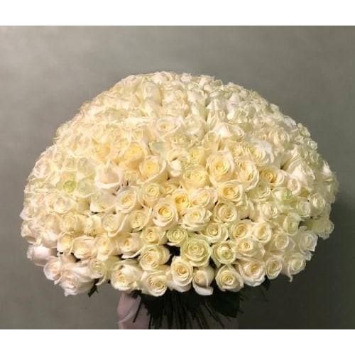 Купить на заказ 201 роза с доставкой в Сарыагаше