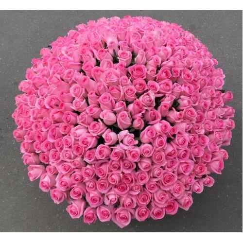 Купить на заказ 501  роза с доставкой в Сарыагаше