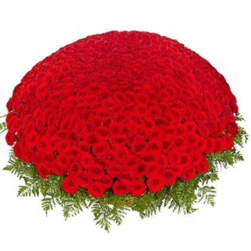 Купить на заказ 301  роза с доставкой в Сарыагаше